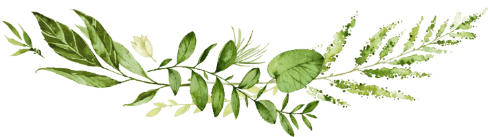 folhas1